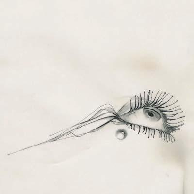 acuario SCALAE: pez de Guillem Carabi